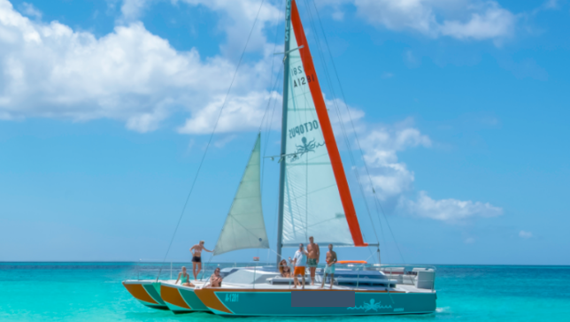 Afternoon delight sailing- snorkeling in Aruba