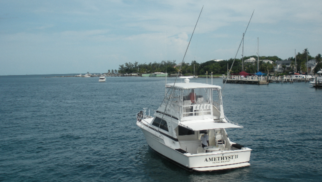 Pesca en alta mar Bahamas